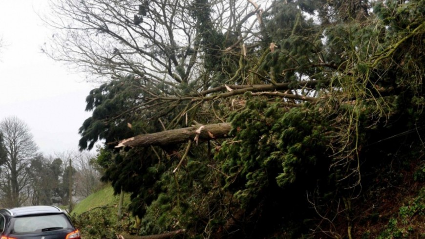 Tempête Zeus : de nombreux dégâts en Auvergne