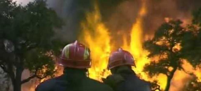 Incendie de forêt : des pompiers du Puy-De-Dôme en renfort dans le sud